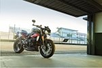 Новые мотоциклы Triumph Speed Triple R / Speed Triple S 2016 - фото 10