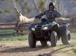 фото Honda TRX420FA Rancher №31