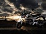 фото Honda MSX125 №3