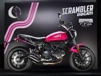 Мотоцикл Ducati Scrambler Sixty2 Shocking
