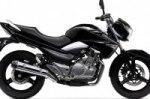 Мотоциклы Suzuki GW250 / TU250X 2017