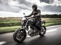 Suzuki показали мотоцикл SV650 Scrambler 2017