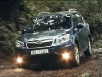 Реклама Subaru Forester