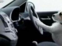 Телевизионный рекламный ролик Hyundai i30 (c. 6)