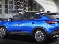 Особенности Opel GrandLand X