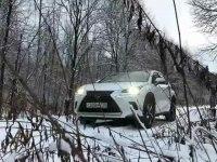 Тест драйв Lexus NX